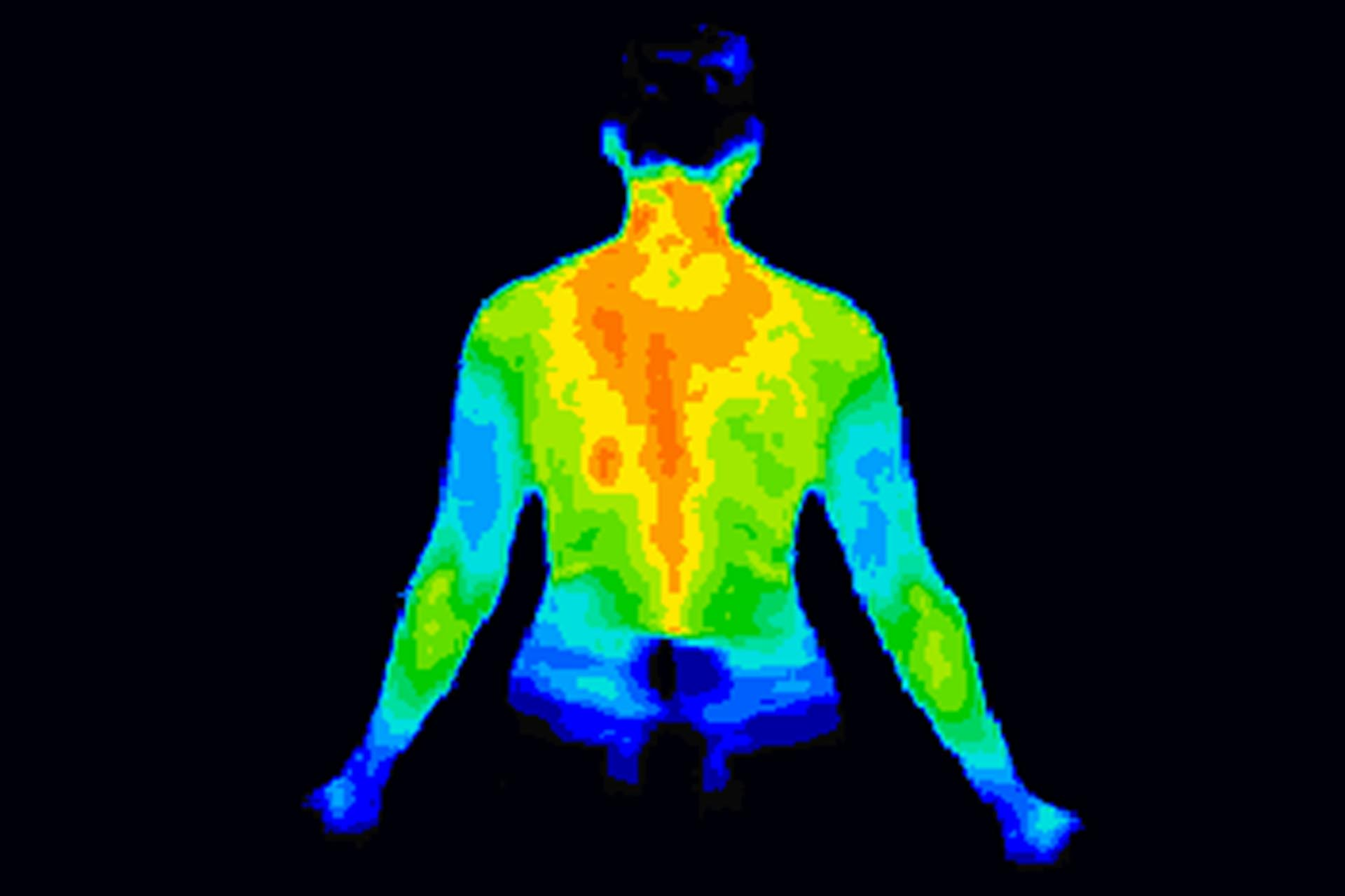 Thermographic image of the body showing need for vulnerability scanning and penetration testing